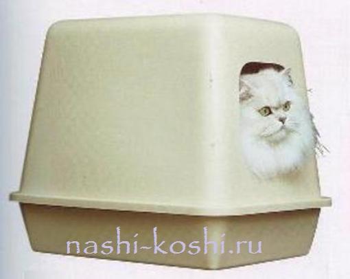 лоток для кошек