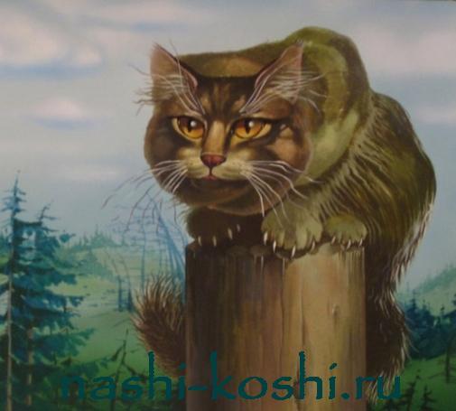 Ёшкин кот