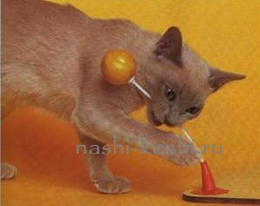 Как сделать кошке игрушку своими руками