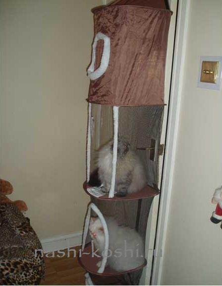 башня для кошки