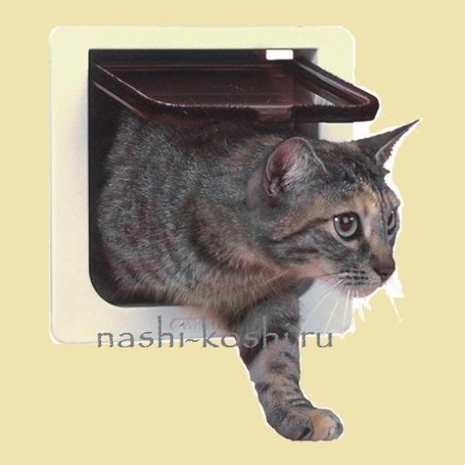 дверца для кошки своими руками