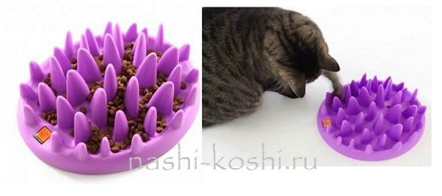 миска-диетолог для кошек